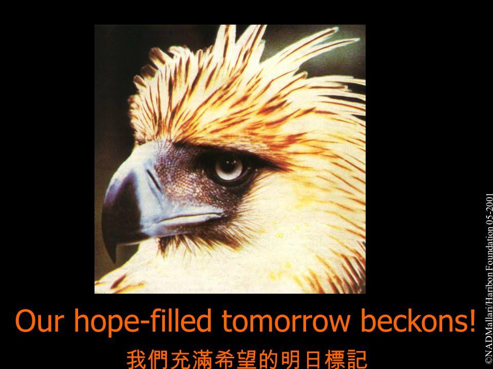 Our hope-filled tomorrow beckons! 我們充滿希望的明日標記 ©NADMallari/Haribon Foundation 05-2001