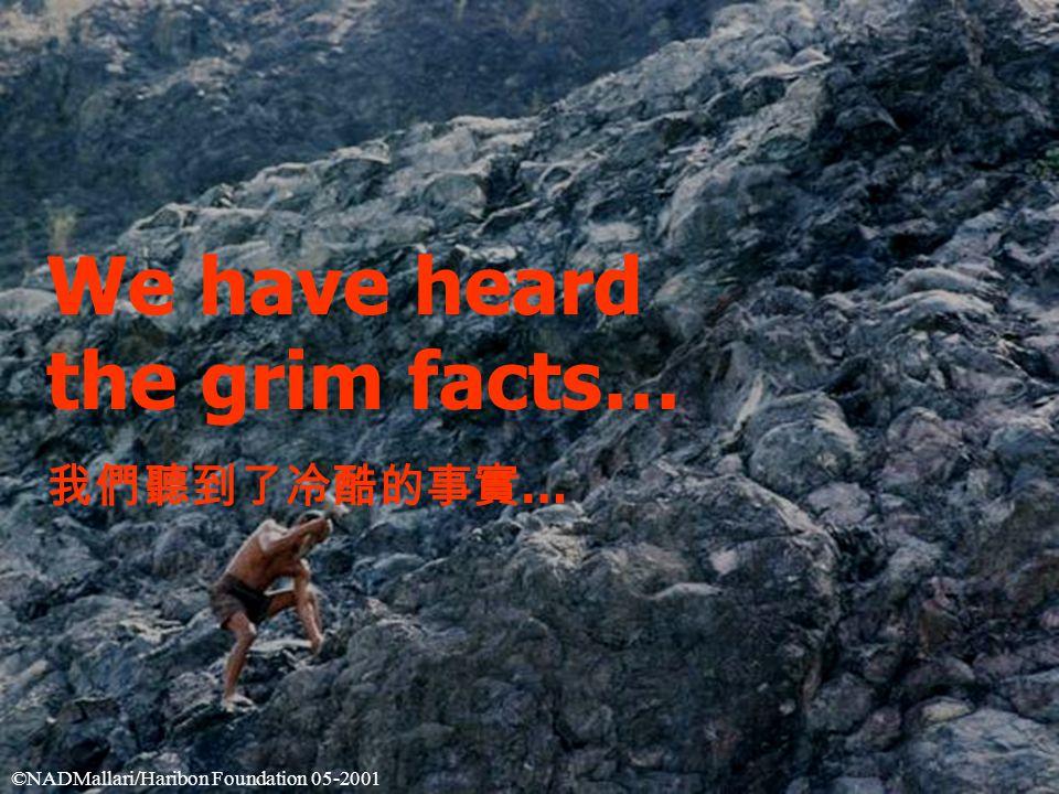 We have heard the grim facts… 我們聽到了冷酷的事實 … ©NADMallari/Haribon Foundation 05-2001