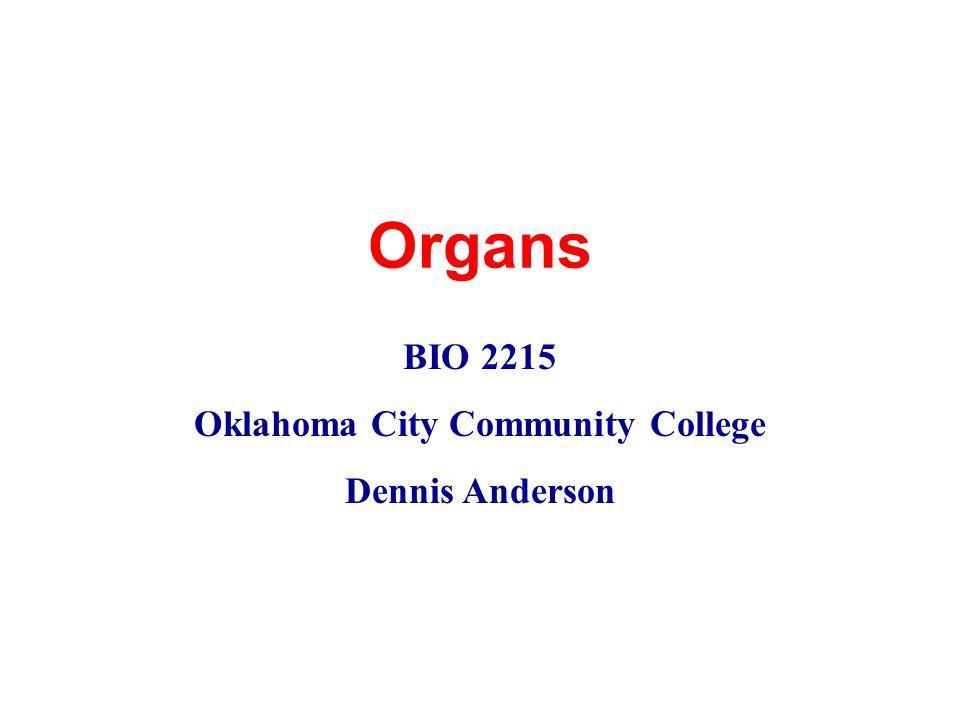 Organs BIO 2215 Oklahoma City Community College Dennis Anderson