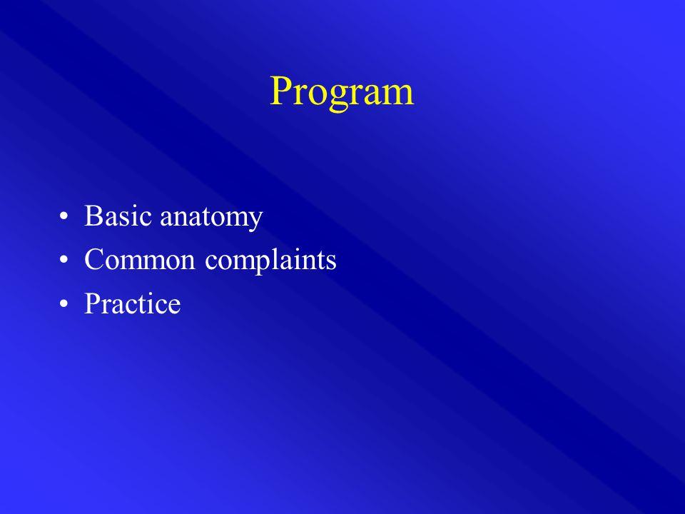 Program Basic anatomy Common complaints Practice