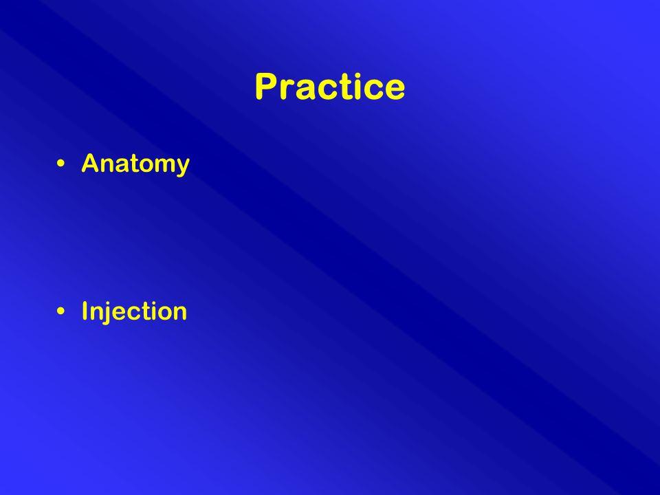 Practice Anatomy Injection