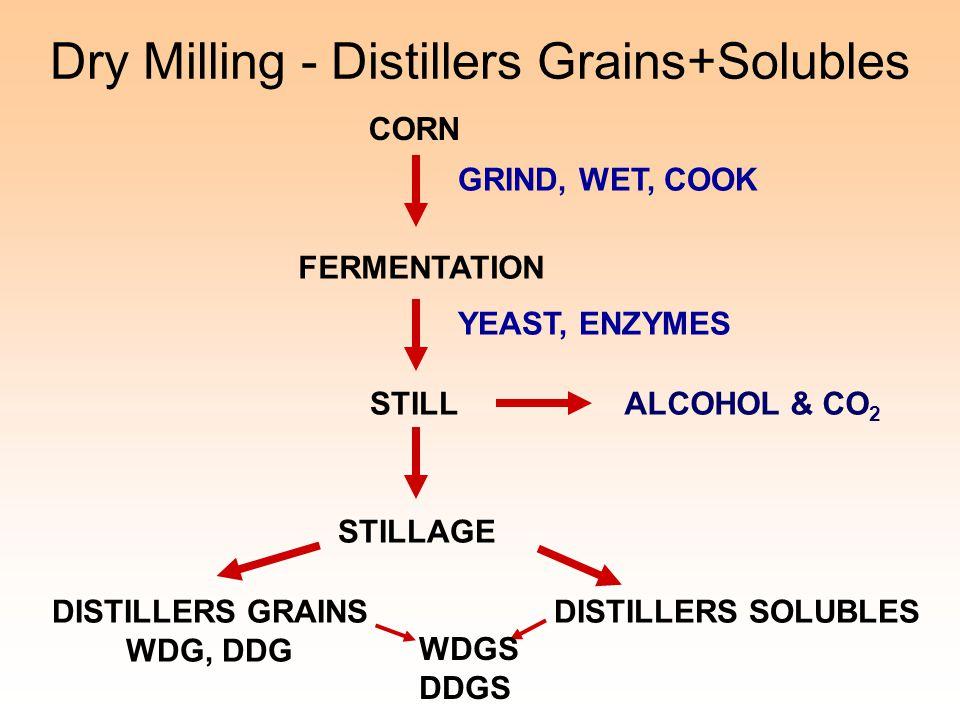 Dry Milling - Distillers Grains+Solubles CORN GRIND, WET, COOK FERMENTATION YEAST, ENZYMES STILLALCOHOL & CO 2 STILLAGE DISTILLERS GRAINS WDG, DDG DIS