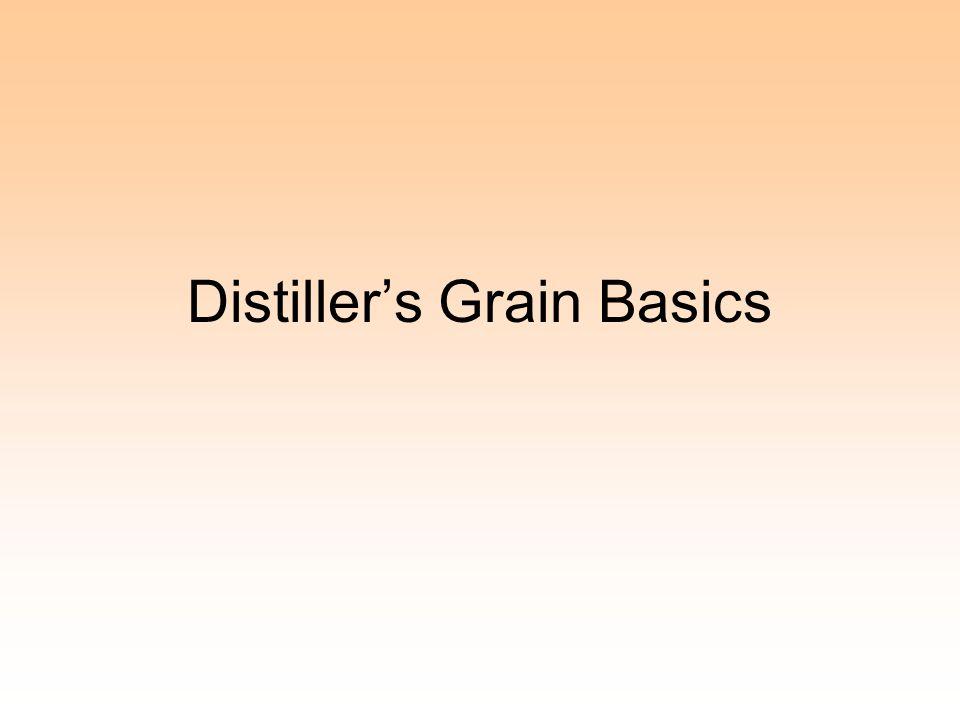 Distiller's Grain Basics