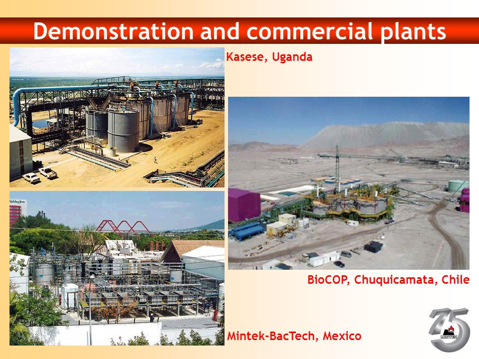 Demonstration and commercial plants Kasese, Uganda Mintek-BacTech, Mexico BioCOP, Chuquicamata, Chile