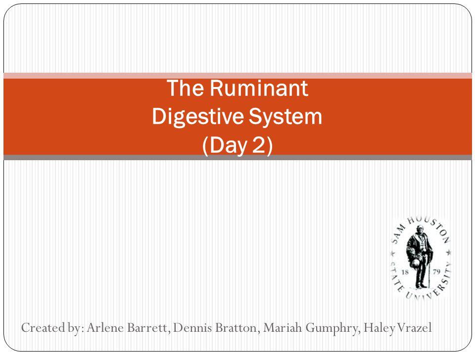 The Ruminant Digestive System (Day 2) Created by: Arlene Barrett, Dennis Bratton, Mariah Gumphry, Haley Vrazel