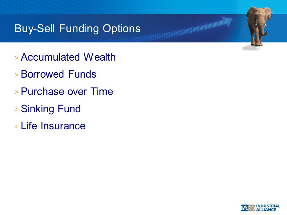 > Accumulated Wealth > Borrowed Funds > Purchase over Time > Sinking Fund > Life Insurance Buy-Sell Funding Options