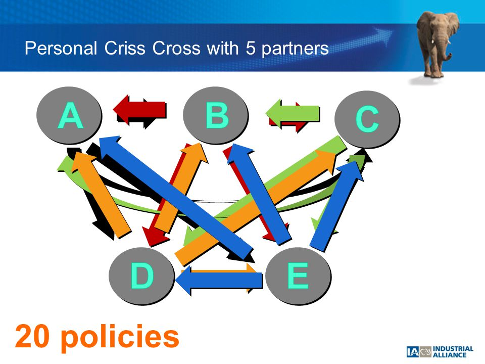 Personal Criss Cross with 5 partners 4 policies8 policies 20 policies
