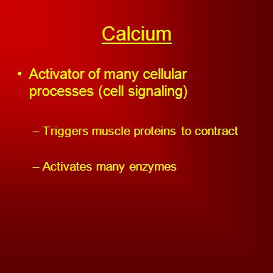 Calcium Activator of many cellular processes (cell signaling) –Triggers muscle proteins to contract –Activates many enzymes