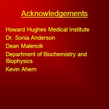 Acknowledgements Howard Hughes Medical Institute Dr. Sonia Anderson Dean Malencik Department of Biochemistry and Biophysics Kevin Ahern