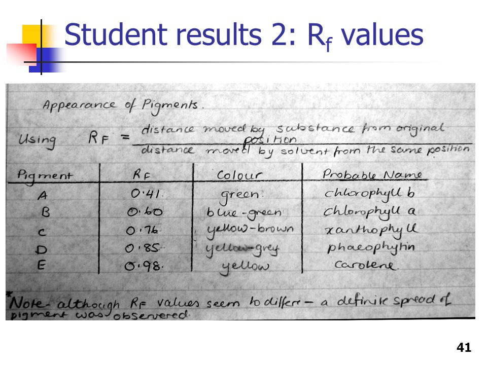 41 Student results 2: R f values