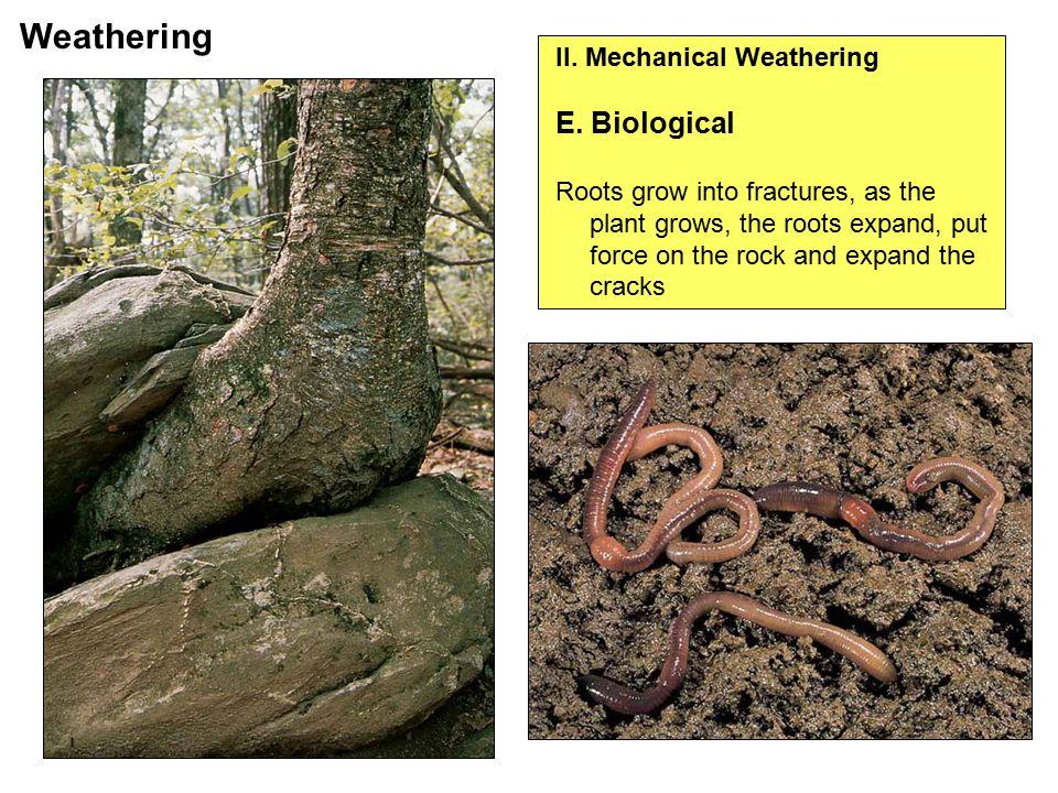 II. Mechanical Weathering E.