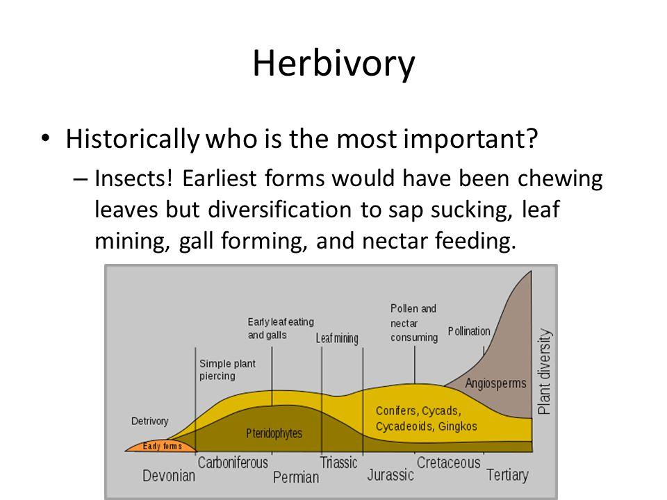 Herbivory Our oldest fossils have evidence of herbivory