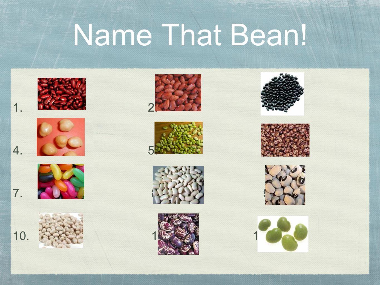 Answers: 1.Kidney bean 2. Pinto bean 3. Black bean 4.