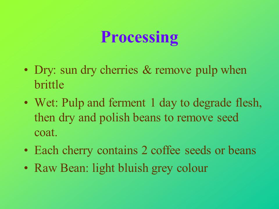Processing Dry: sun dry cherries & remove pulp when brittle Wet: Pulp and ferment 1 day to degrade flesh, then dry and polish beans to remove seed coat.