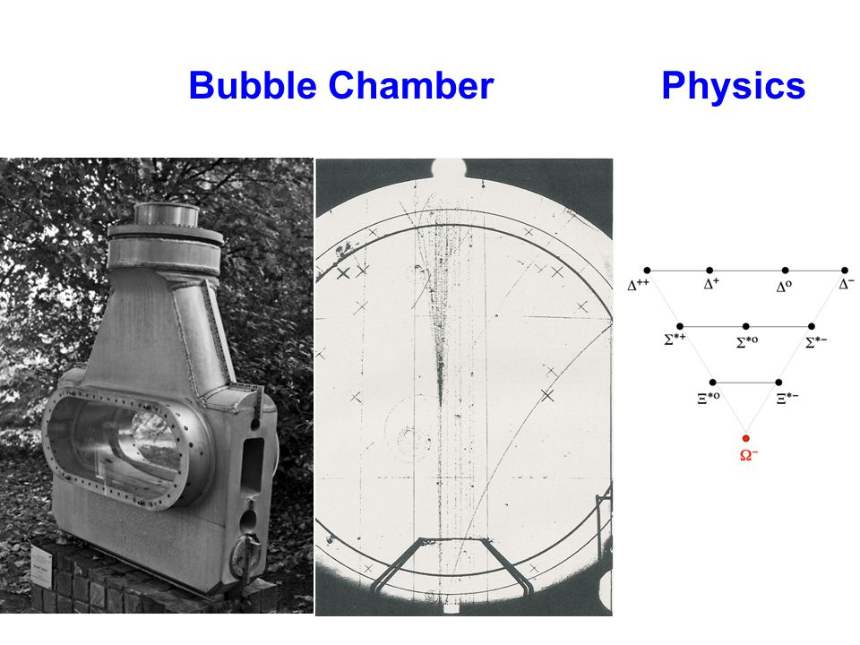 Bubble ChamberPhysics