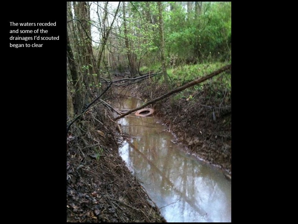 As the waters went down some of the erosion on the sides of these creeks and ditches became accessible.