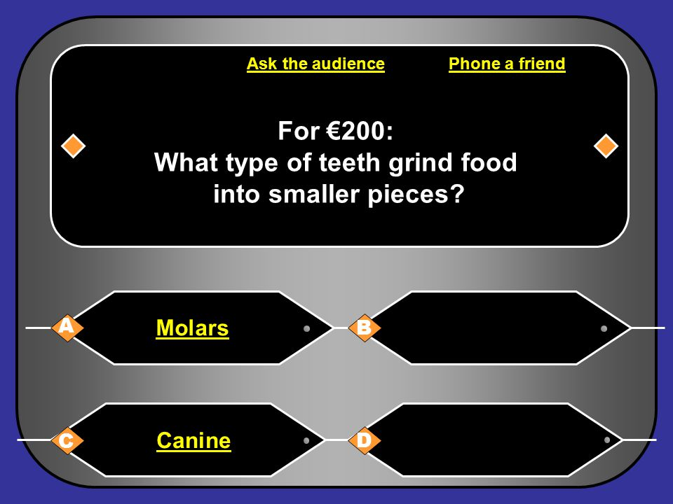 A: Molars You have won €200 Next Question