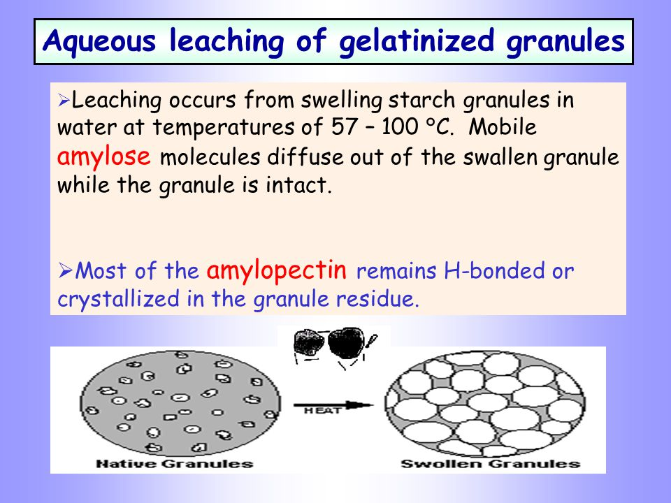 Aqueous leaching of gelatinized granules  Leaching occurs from swelling starch granules in water at temperatures of 57 – 100 °C.