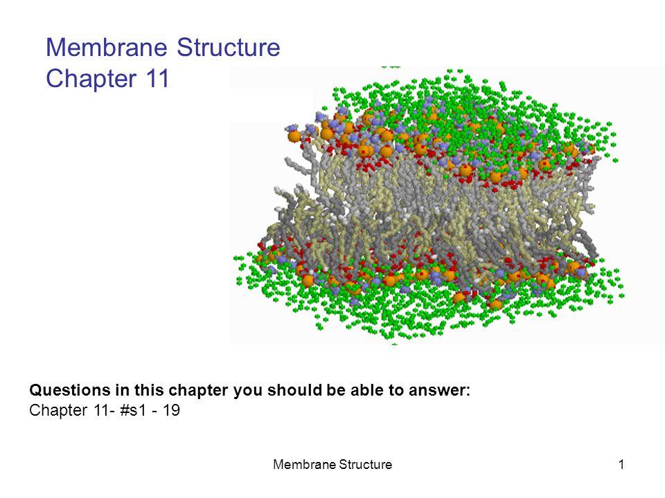 Membrane Structure2 Membranes are described as a 2-dimensional liquid .