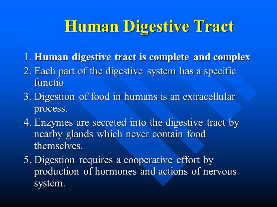 Human Digestive Tract Human Digestive Tract 1. Human digestive tract is complete and complex 2. Each part of the digestive system has a specific funct