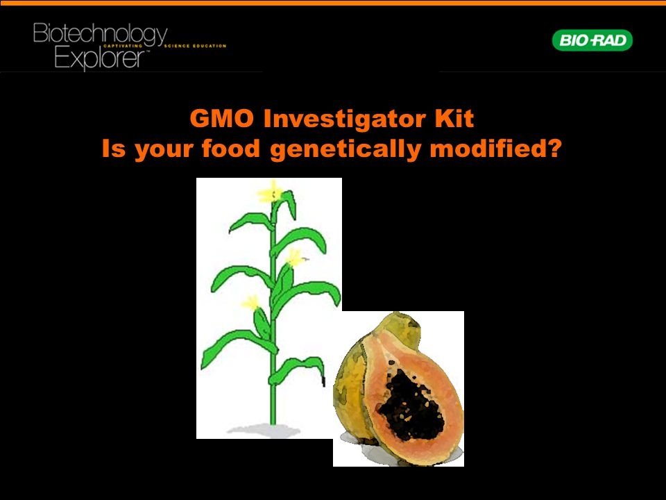 GMO Investigator Kit Is your food genetically modified?