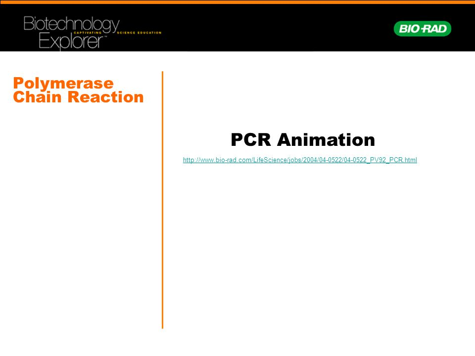Polymerase Chain Reaction PCR Animation http://www.bio-rad.com/LifeScience/jobs/2004/04-0522/04-0522_PV92_PCR.html