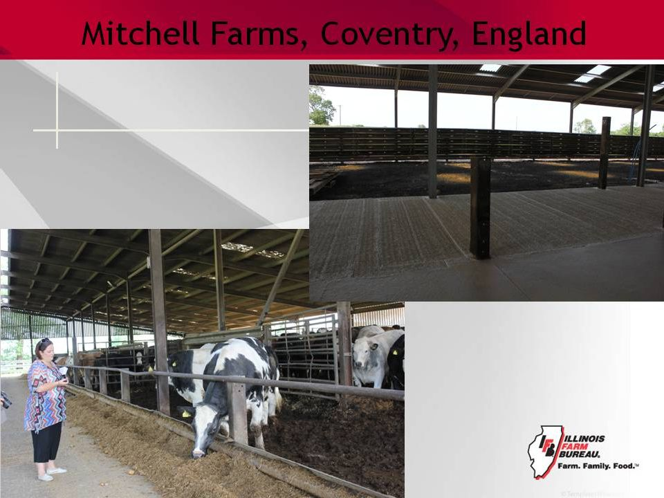 Mitchell Farms, Coventry, England