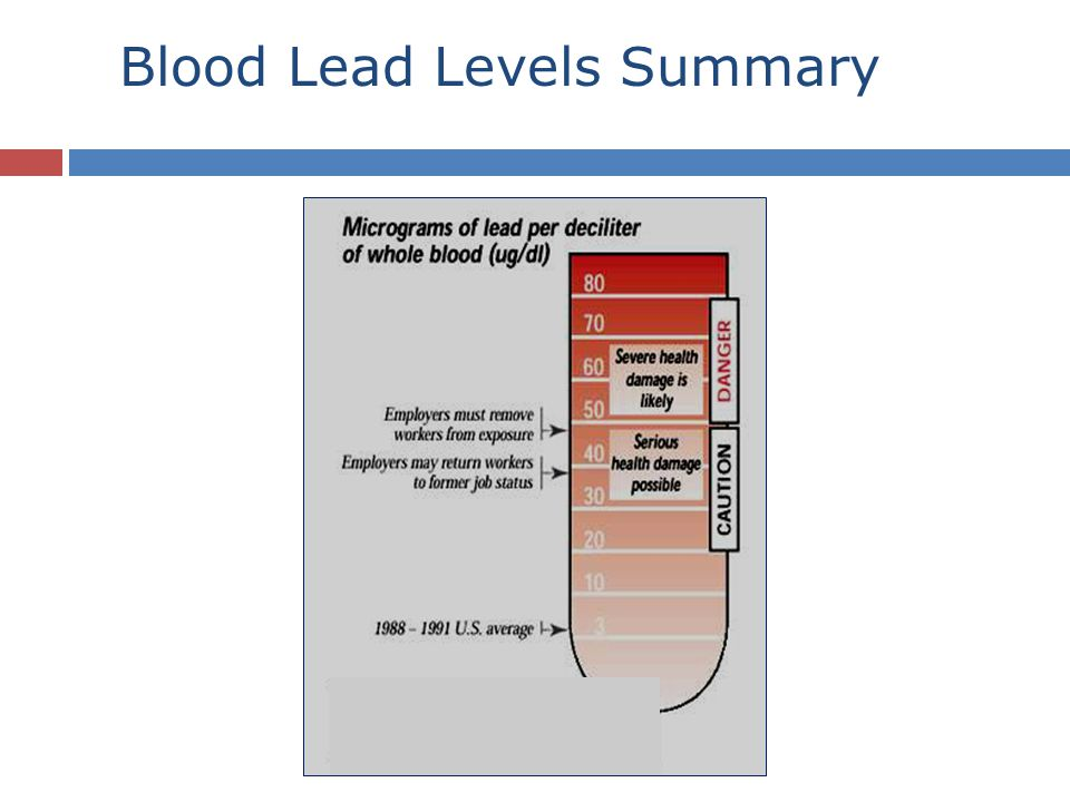 Blood Lead Levels Summary