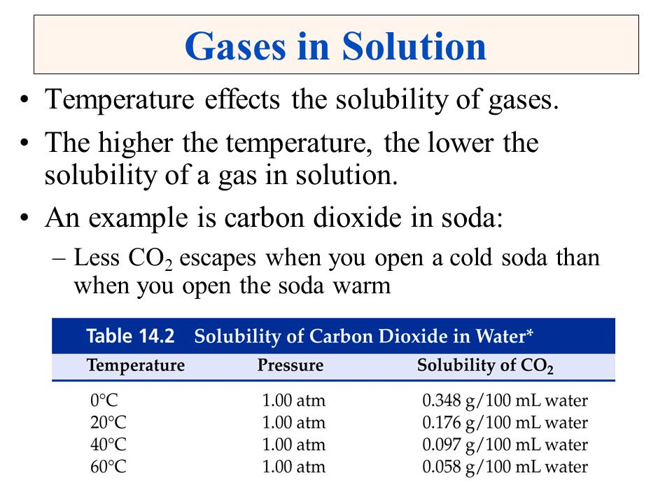Gases in Solution Temperature effects the solubility of gases. The higher the temperature, the lower the solubility of a gas in solution. An example i