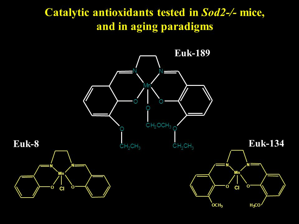 Catalytic antioxidants tested in Sod2-/- mice, and in aging paradigms O N Mn O N Cl Euk-8 O N Mn O N Cl OCH 3 H 3 CO Euk-134 N OO Mn N O O CH 2 CH 3 CH 2 CH 3 CH 2 OCH 3 O Euk-189