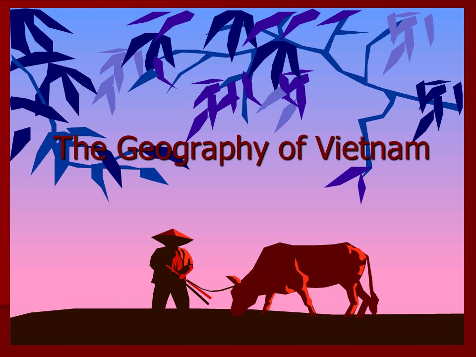 Vietnam is one of the ten countries that compose Southeast Asia Vietnam is one of the ten countries that compose Southeast Asia It is bordered by China on the north, Cambodia and Laos on the west, the Gulf of Tonkin to the northeast, the Gulf of Thailand to the southwest, and the South China Sea to the east.