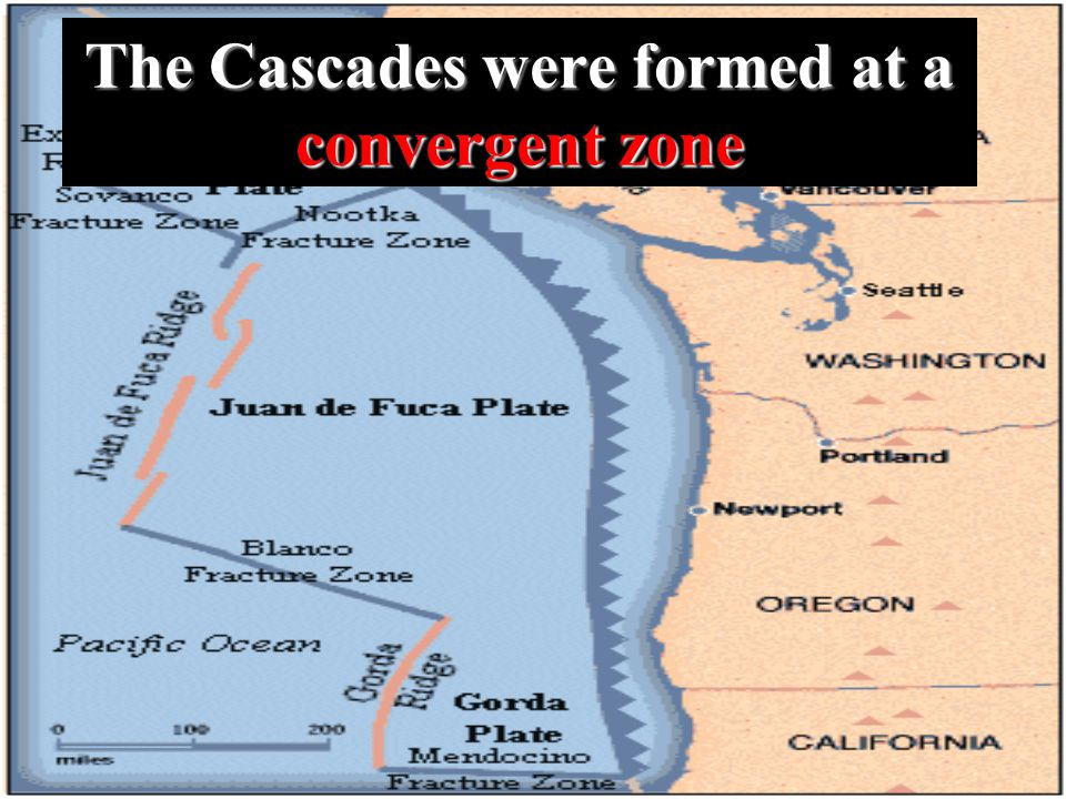 The Cascades were formed at a convergent zone