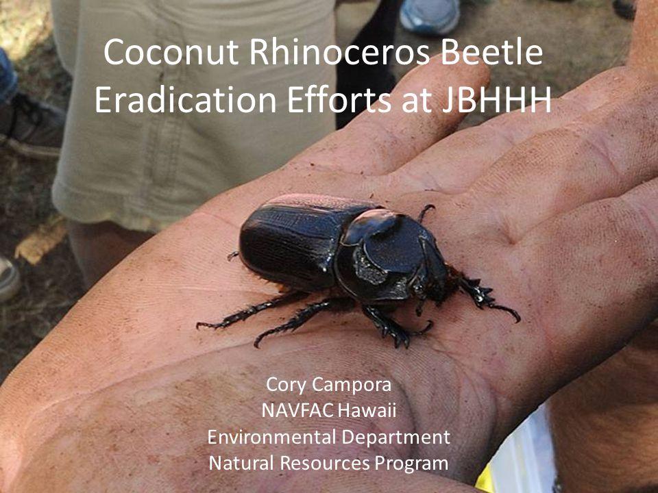 Coconut Rhinoceros Beetle Eradication Efforts at JBHHH Cory Campora NAVFAC Hawaii Environmental Department Natural Resources Program