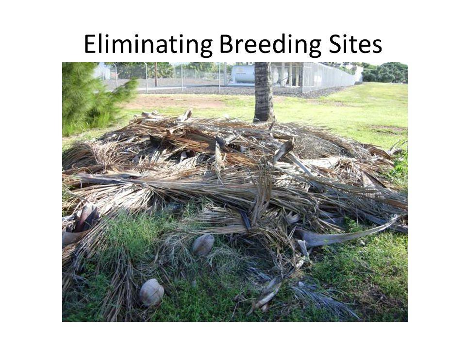 Eliminating Breeding Sites