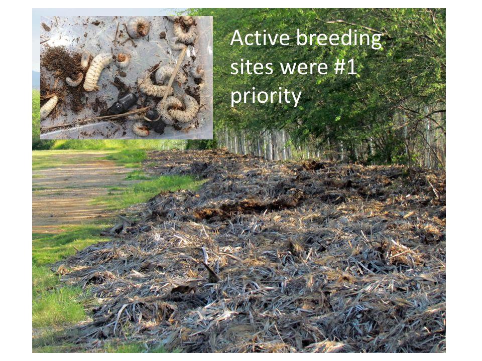 Active breeding sites were #1 priority