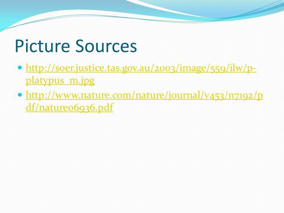 Picture Sources http://soer.justice.tas.gov.au/2003/image/559/ilw/p- platypus_m.jpg http://soer.justice.tas.gov.au/2003/image/559/ilw/p- platypus_m.jp