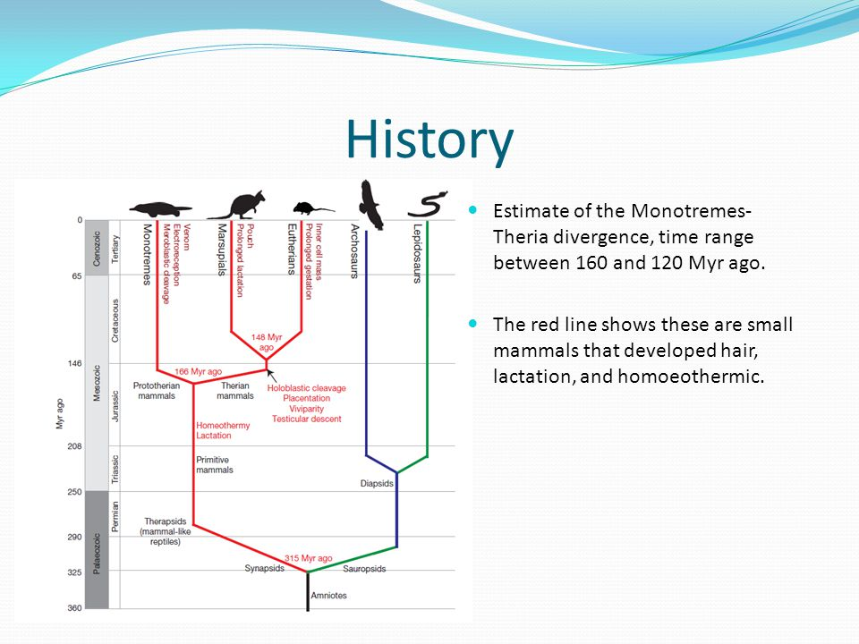 References http://assets0.pubget.com/pdf/8269934.pdf http://www.nature.com/nature/journal/v453/n7192/p df/nature06936.pdf http://www.nature.com/nature/journal/v453/n7192/p df/nature06936.pdf