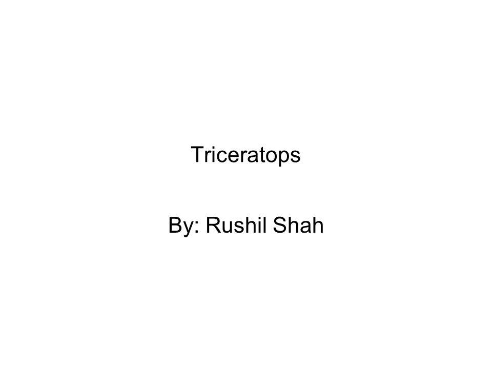 By: Rushil Shah