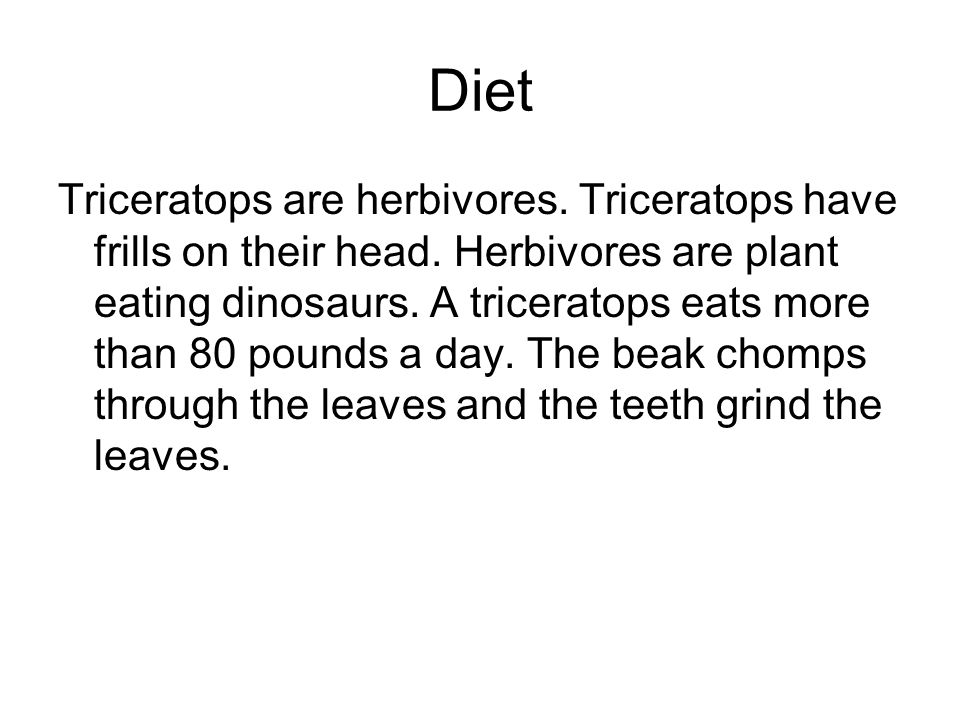 Diet Triceratops are herbivores. Triceratops have frills on their head. Herbivores are plant eating dinosaurs. A triceratops eats more than 80 pounds