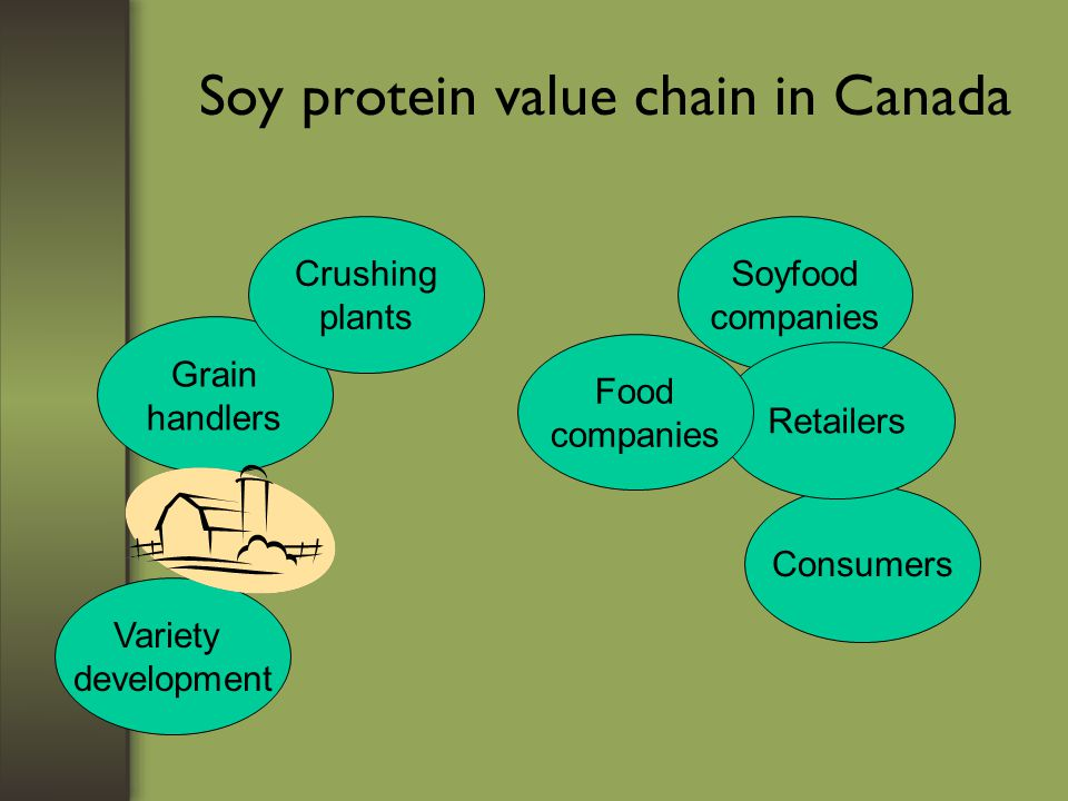 Soy protein value chain in Canada Variety development Grain handlers Crushing plants Soyfood companies Consumers Retailers Food companies