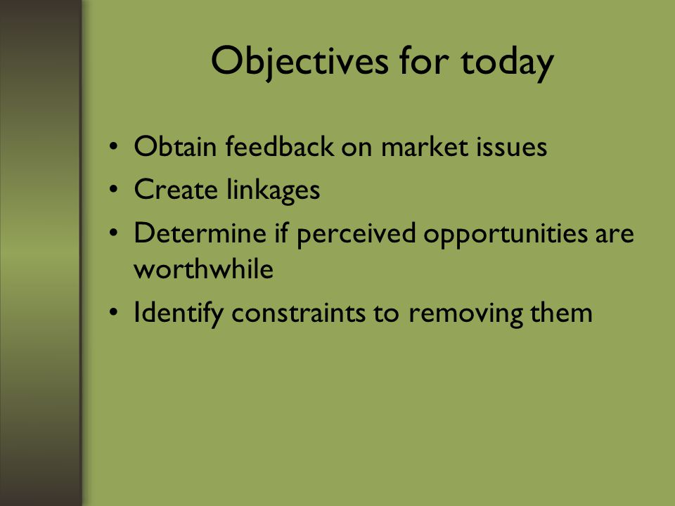 Objectives for today Obtain feedback on market issues Create linkages Determine if perceived opportunities are worthwhile Identify constraints to removing them