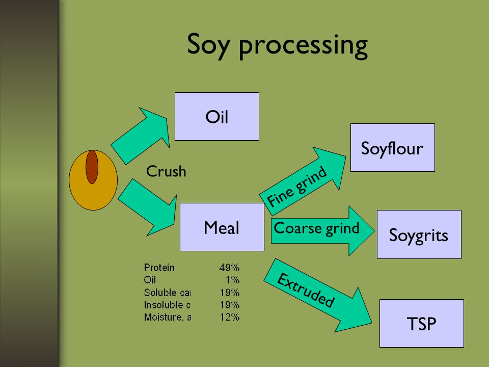 Soy processing Oil Meal Crush Soyflour Soygrits TSP Fine grind Coarse grind Extruded