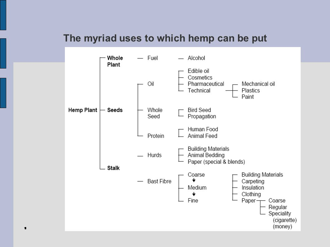 The myriad uses to which hemp can be put
