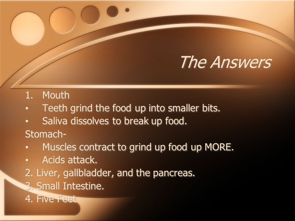 The Quiz 1.How does mechanical and chemical digestion occur in both the stomach and the mouth.