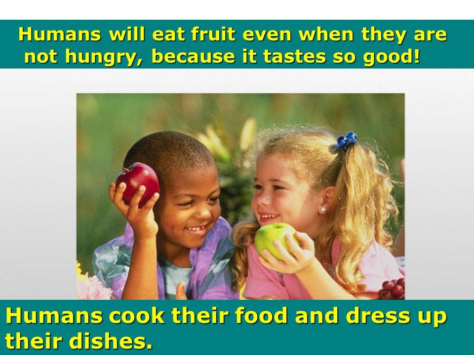 Animals enjoy eating raw meat.....