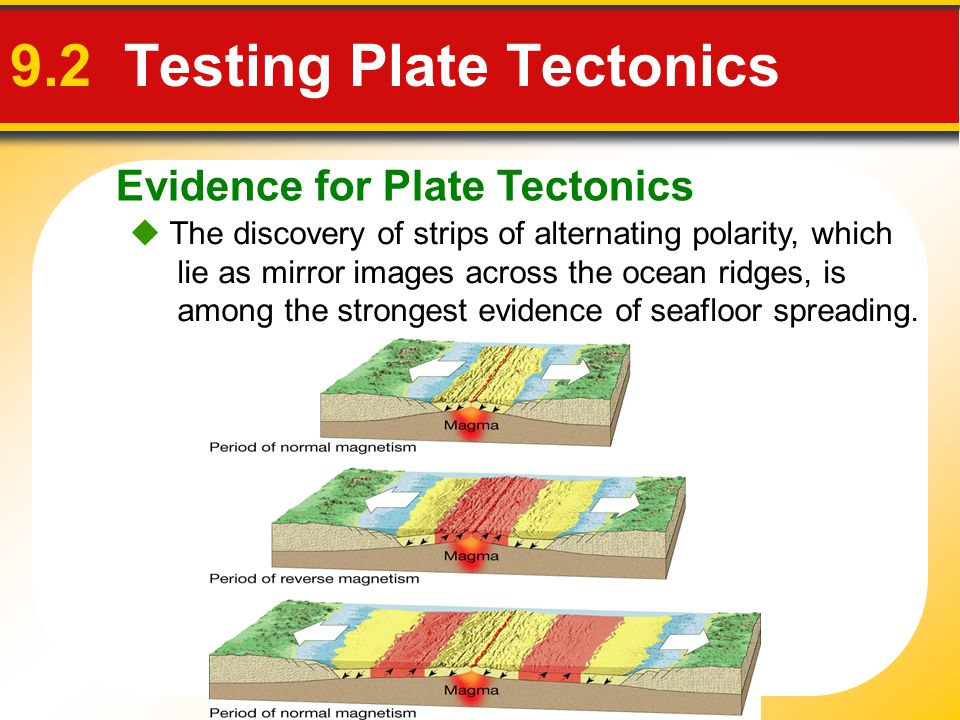 Evidence for Plate Tectonics 9.2 Testing Plate Tectonics  The discovery of strips of alternating polarity, which lie as mirror images across the ocea