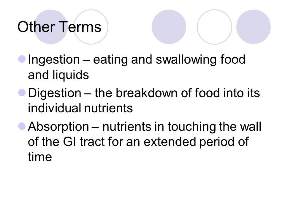 Other Terms Ingestion – eating and swallowing food and liquids Digestion – the breakdown of food into its individual nutrients Absorption – nutrients