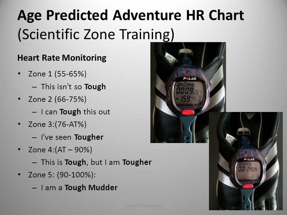 Age Predicted Adventure HR Chart (Scientific Zone Training) Heart Rate Monitoring Zone 1 (55-65%) – This isn t so Tough Zone 2 (66-75%) – I can Tough this out Zone 3:(76-AT%) – I ve seen Tougher Zone 4:(AT – 90%) – This is Tough, but I am Tougher Zone 5: (90-100%): – I am a Tough Mudder nashFIT Adventure