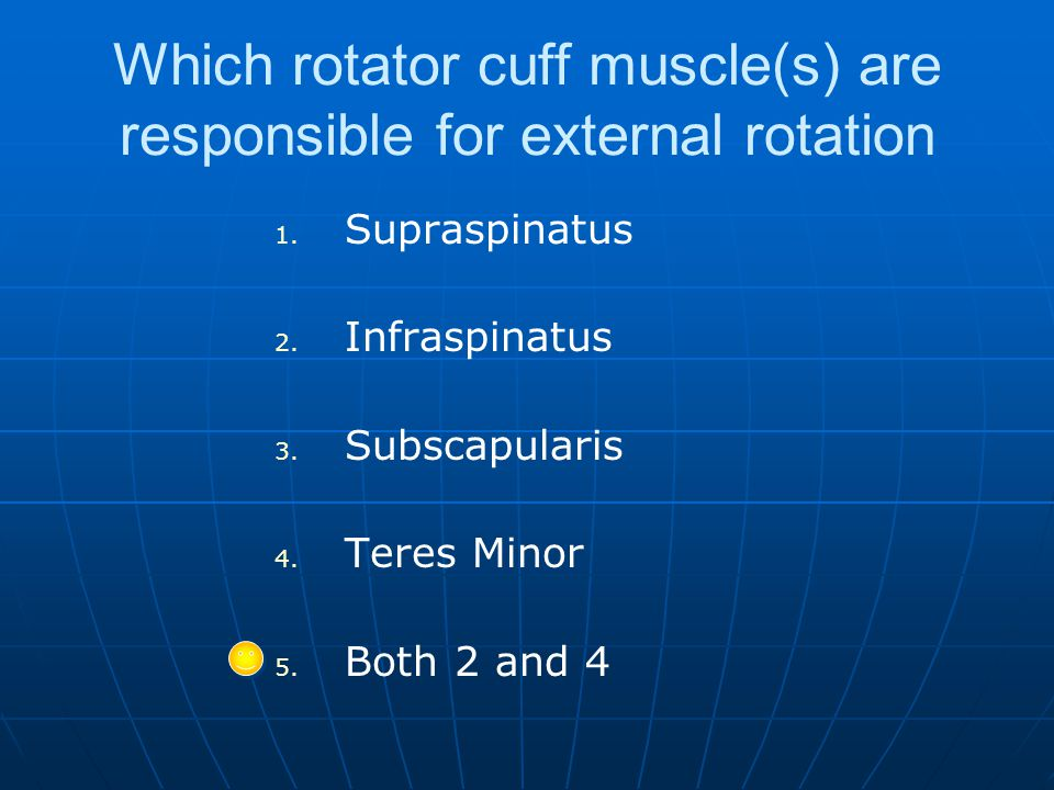 Which rotator cuff muscle(s) are responsible for external rotation 1.