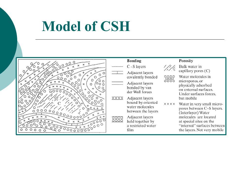 Model of CSH